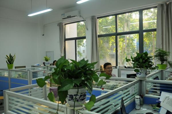 绿色植物中办公 心情自然大好