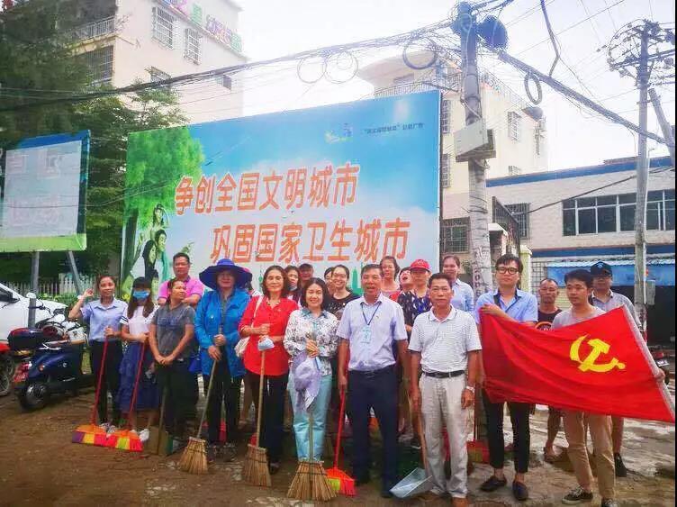 党员活动日 三亚市妇联开展环境卫生整治活动